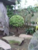 2007_07022july0025_2
